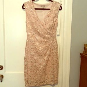 Lace Pink Dress floral detail and silver sequins
